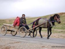 Tibetan near Shishapangma